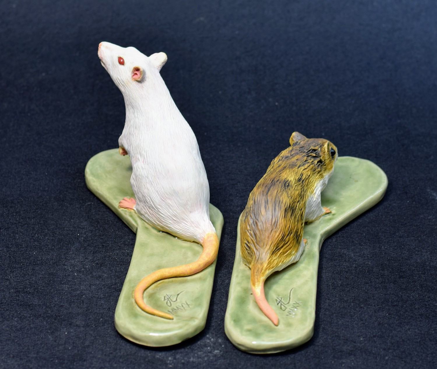 Chinese Hamster and Lab Rat